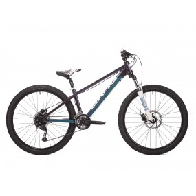 Bicycle Drag 26 C1 Fun